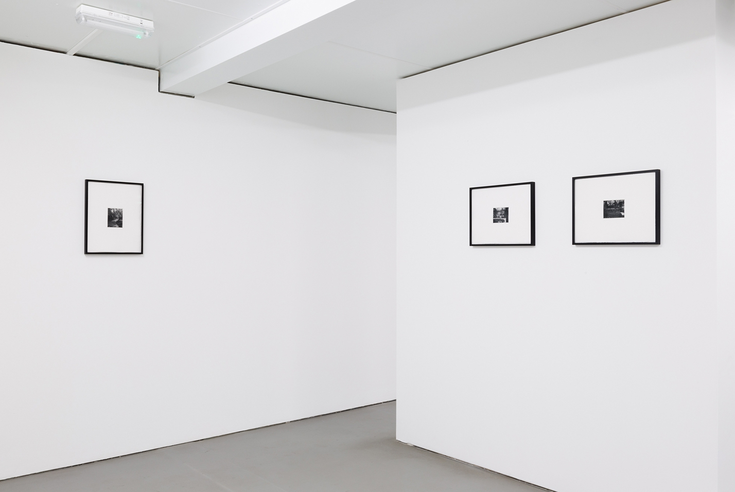 Grace Johnston4_forweb.jpg